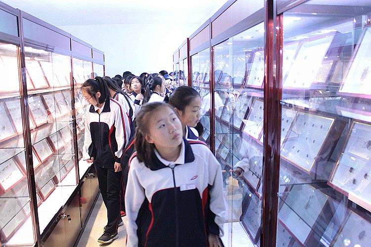 泉阳葡京手机电子游戏开展为青少年普及林业有害生物防治知识活动